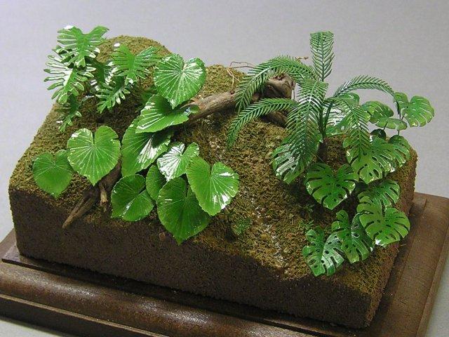 画像1: ジャングルA