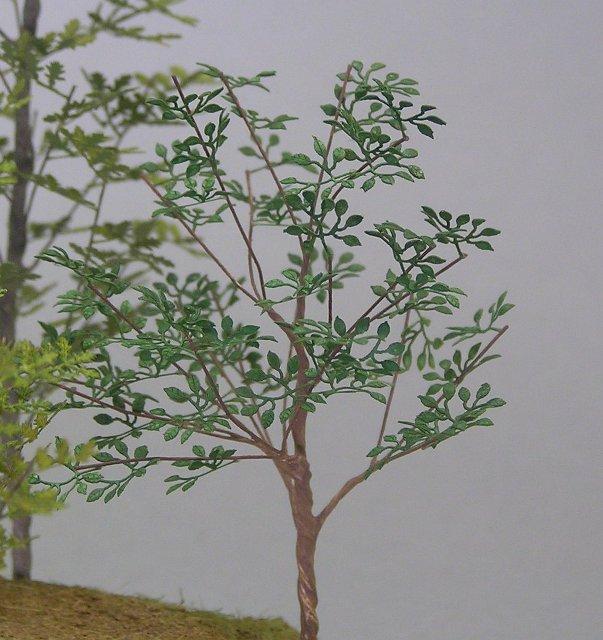 画像1: 雑木