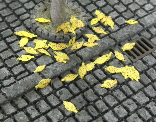 画像1: 落葉雑木(黄)