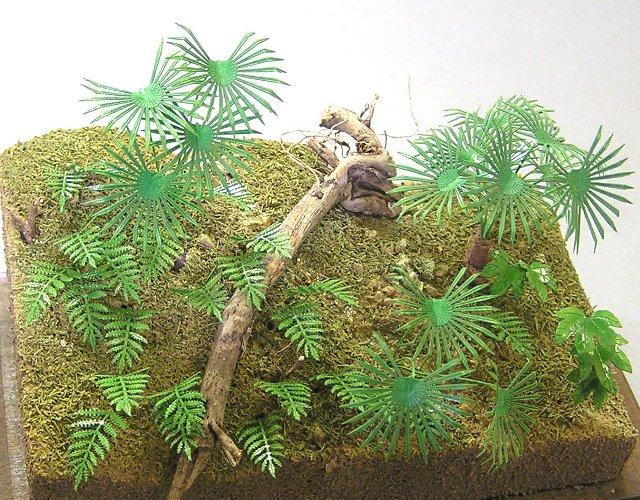 画像1: ジャングルB