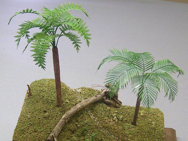 画像1: ジャングルC