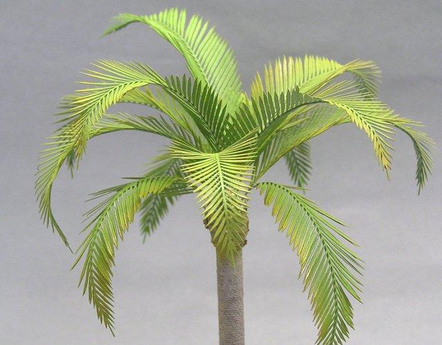 画像1: ココヤシの葉