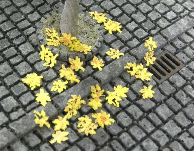 画像1: 落葉メープル(黄)